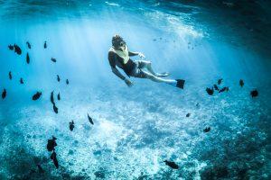 PHIDEX 2021 Makes a Splash in the International Dive Market